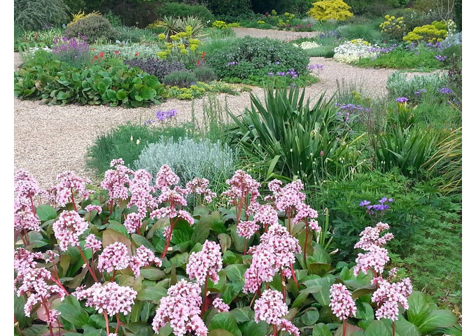 The Beth Chatto Principles of Garden Design