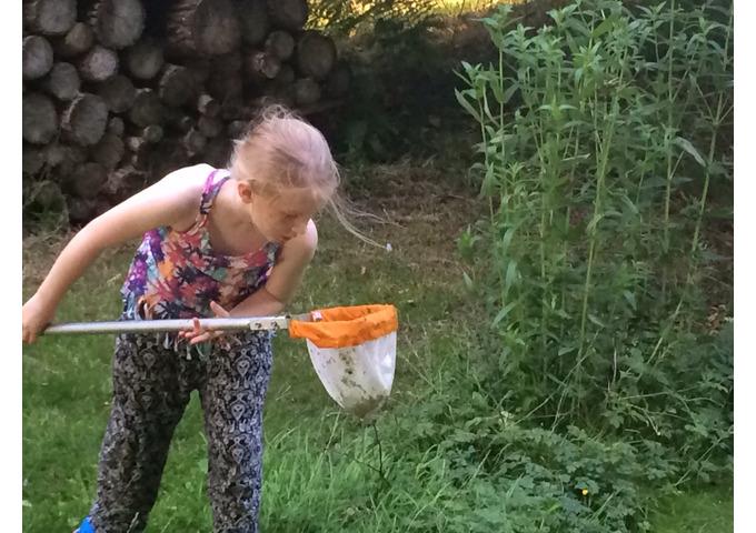 Pond Detectives - Garden Activity Day for Children