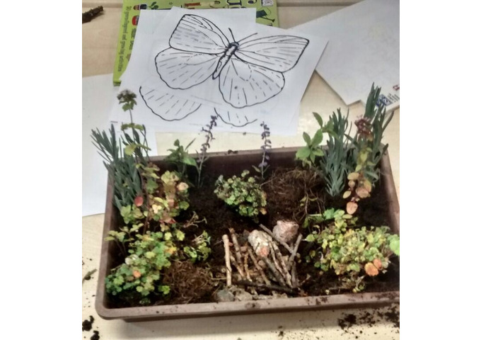 My Wildlife Garden - Garden Activity Day for Children