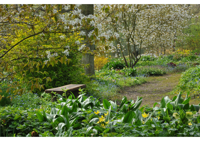 Spring Practical Gardening Course - 12 weeks