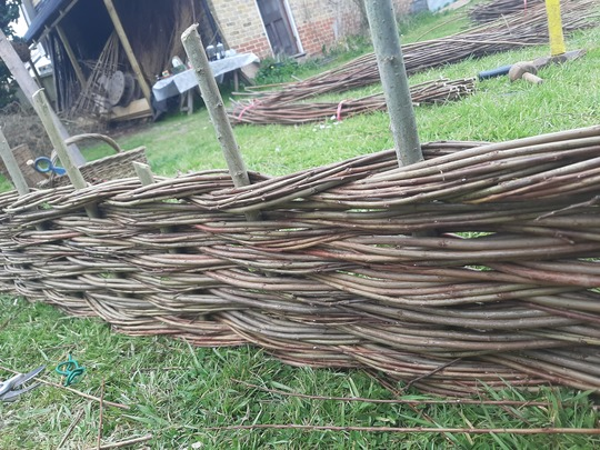 Border Fencing and Sunflower Sculpture in Willow