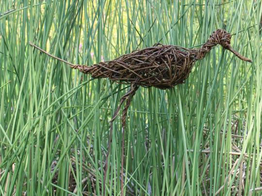 Weaving A Willow Avocet