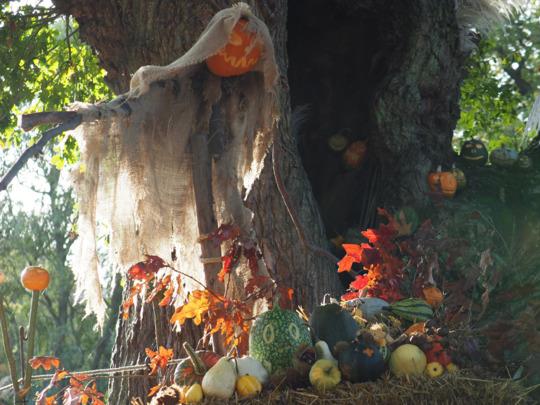 Pumpkin Carving and Goblins - Garden Activity Morning for Children