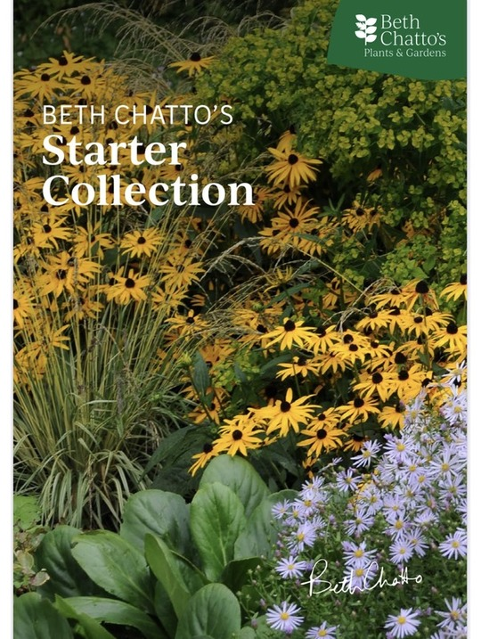 Beth Chatto's Starter Collection
