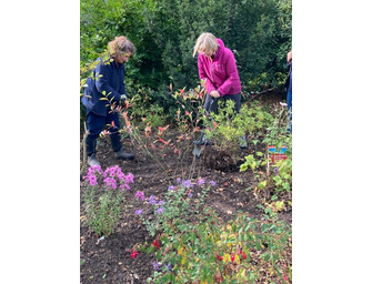 Autumn Practical Gardening - 8 week course