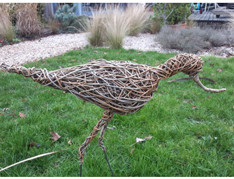 Weaving A Willow Avocet