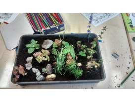 Postponed - Marvellous Mini Gardens & Beasts - Family Gardening Morning
