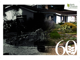 Garden Party - 60 Years of the Beth Chatto Gardens