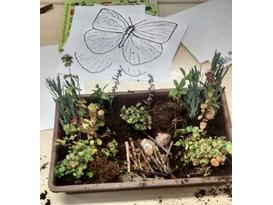 My Wildlife Garden - Garden Activity Day for Children