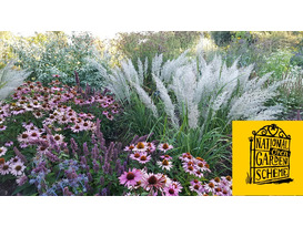 National Garden Scheme Open Day
