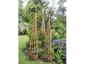 Weaving a Willow Obelisk & Platter