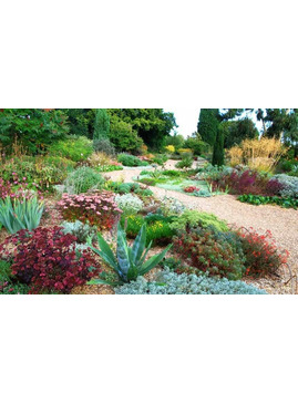 Design Your Own Garden - 30 week Course