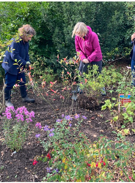Autumn Practical Gardening - 8 week course