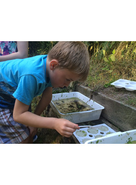 Ponds and Flower Boxes - Garden Activity Morning for Children