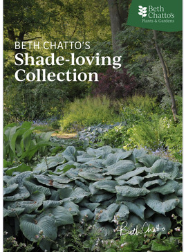 Beth Chatto's Shade-loving Collection