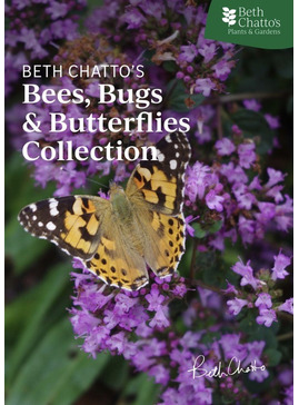 Beth Chatto's Bees, Bugs & Butterflies Collection