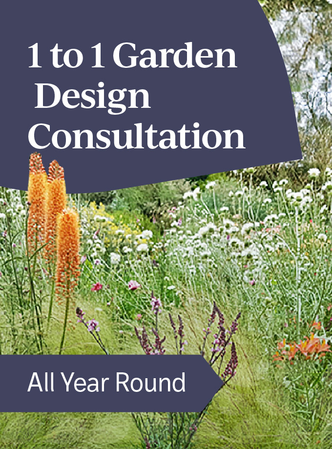 One-To-One Garden Design Consultation
