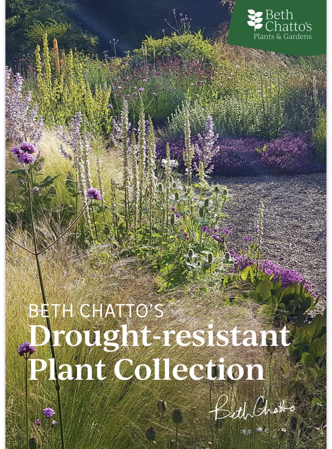 Beth Chatto's Drought-resistant Plant Collection
