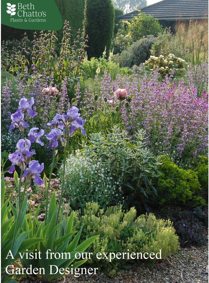 One-to-One Garden Consultation