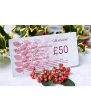 £50 Gift Token